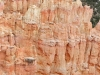 bryce-canyon-hoodoo-detail