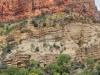 grand-canyon-roaring-springs-narrow
