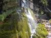grand-canyon-secret-waterfall