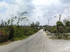 Grand Cayman Back Roads