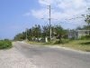 Jamaican Back Road