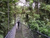 Monteverde - Mike on the Canopy Suspension Bridge