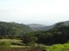 Monteverde Countryside 1