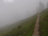 alps-a-path-into-the-mist