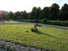 an-afternoon-in-the-hofgarten