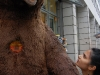 chitra-gives-the-berlin-bear-stare