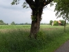 garching-path-and-field