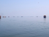 alleppey-houseboats-on-the-water