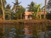 alleppey-man-in-house-along-water
