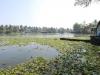 kerala-approaching-the-boat