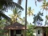 kerala-bungalow-with-the-tall-palms