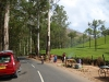 munnar-stopping-for-photos-in-front-of-tea-field