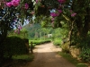 munnar-windermere-flowered-entranceway