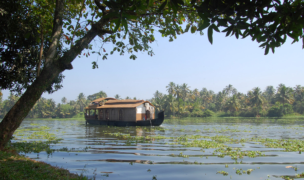 alleppey-houseboat-under-tree