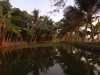 kerala-small-boats-view-in-the-canal