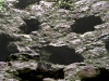 blarney-arrow-holes