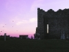 cashel-birds-against-purple-sky-with-building