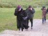 moher-it-was-very-windy