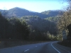 Driving through Great Smokey Mountains