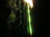 Duck Fireworks Explode
