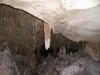 Mammouth Cave - Crickets