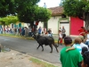 granada-and-the-bull-runs-on