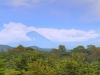 leon-viejo-two-volcanos-beyond-the-canopy