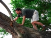 ometepe-mike-climbs-tree