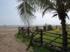 poneloya-beach-view-from-under-a-palm-tree