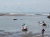 poneloya-carrying-the-manta-ray-back-2