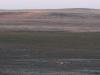 badlands-a-single-deer
