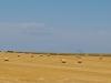 dakotas-rolls-of-hay