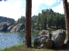 custer-state-park-sylvan-lake-with-two-trees-and-rocks