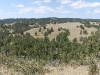 custer-state-park-view-from-top-of-a-hill