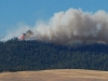 wildfire-fire-burns-on-the-hill
