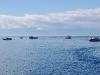 san-juan-islands-boats-wait-for-the-orcas