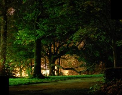 front-yard-at-night