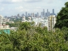 View of Singapore from atop a Hill