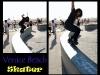 venice-beach-skater