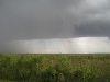 everglades-thunderstorm-explodes-over-landscape