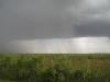 everglades-thunderstorm-explodes-over-landscape