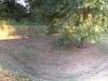 memphis-sunken-tree-home-near-metalworks