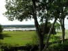 natchez-mississippi-river-from-plantation-balcony