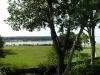 natchez-mississippi-river-from-plantation-balcony