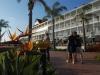 coronado-beach-sheerwater-hotel-focusing-on-flowers