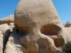 joshua-tree-skull-rock