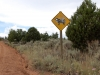 southern-utah-where-the-cow-says-nothing-bc-its-been-shot-through-the-head