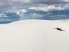 white-sands-chitra-lying-in-the-vast-white-desert