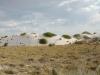 white-sands-long-grass-covered-dune