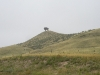 Wyoming - Buffalo en Route to Cheyenne